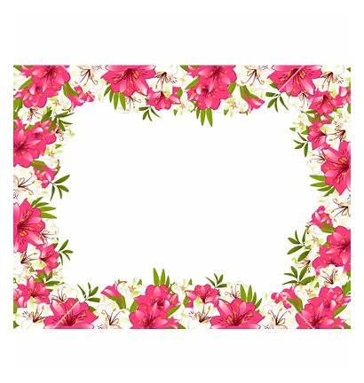 Border Borders Flower Line Clipart Pretty Floral