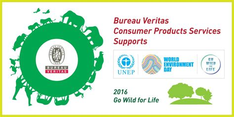 bureau veritas industrial services bureau veritas consumer products services supports