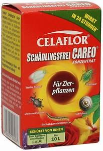 Celaflor Schädlingsfrei Careo Konzentrat : celaflor celaflor sch dlingsfrei careo konzentrat f r zierpflanzen ~ A.2002-acura-tl-radio.info Haus und Dekorationen