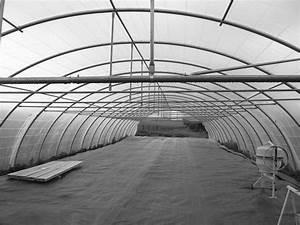 Tunnel Agricole Pas Cher : serres tunnels mara cher professionnels en midi pyrenees occasion ou destockage toutes les ~ Dode.kayakingforconservation.com Idées de Décoration