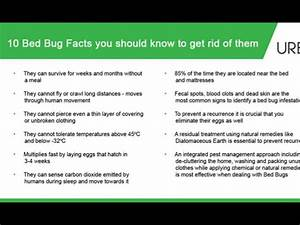 how to get rid of flea bed bugs naturally With does washing get rid of bed bugs