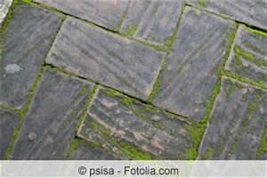 Moos Aus Fugen Entfernen : terrassenplatten reinigen moos und algen von terrasse ~ Lizthompson.info Haus und Dekorationen