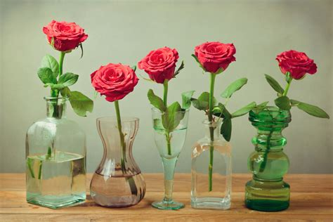How To Preserve Flowers In A Vase by Aspirin Or 7 Up What Keeps Flowers Fresh