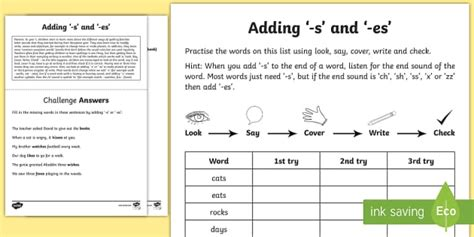 Year 1 Spelling Practice Adding The Suffixes 's' And 'es