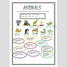 2001 Free Esl Animals Worksheets