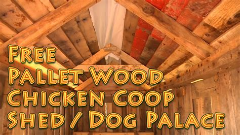 recycled pallet wood shed chicken coop youtube
