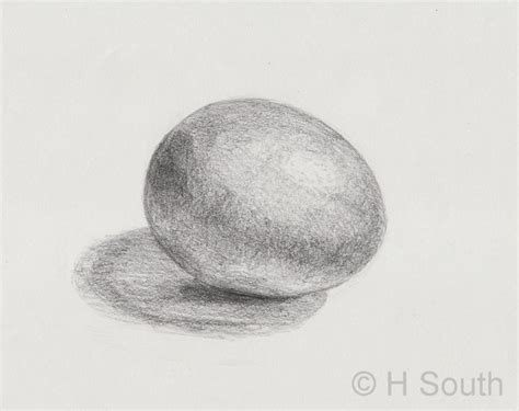 shade  egg drawing    exercise