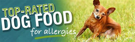 canned food  dogs  allergies food