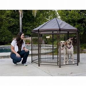 outdoor dog kennel large house pen cat exercise cover With outside dog pens for large dogs