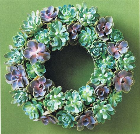 succulent wreath blending beautiful 187 happy holidays unique wreaths