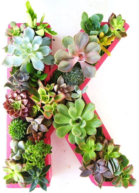 succulent letter succulent planter monogrammed or numbers by rootedinsucculents