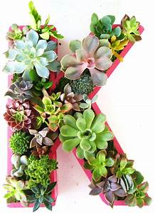 succulent planter monogrammed or numbers by rootedinsucculents With monogram letter planter