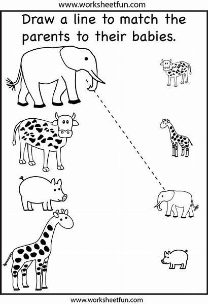 Worksheets Preschool Olds Printable Worksheet Activities Matching