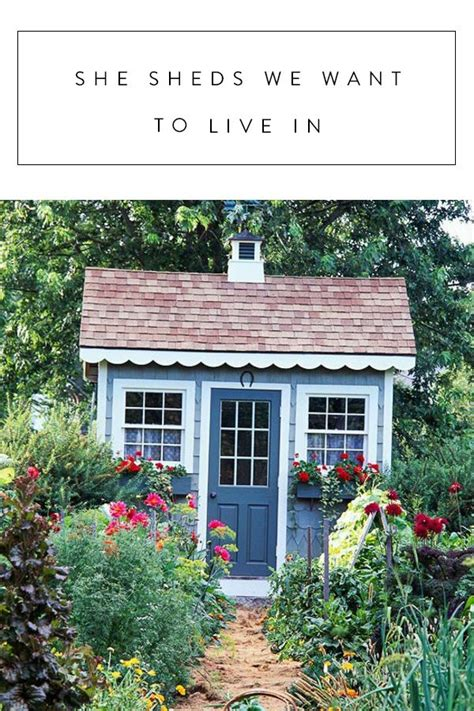 living in a shed 25 best ideas about sheds to live in on