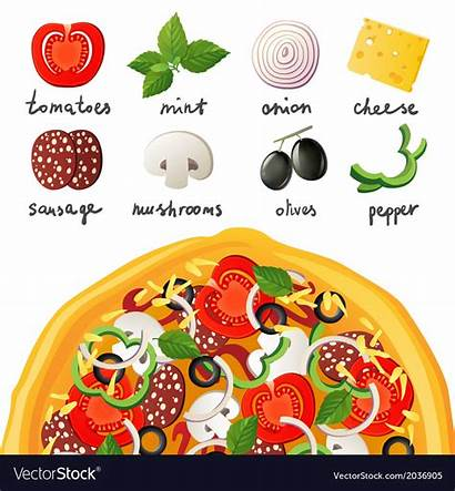 Pizza Ingredients Vector Clipart Elements Topping Graphics