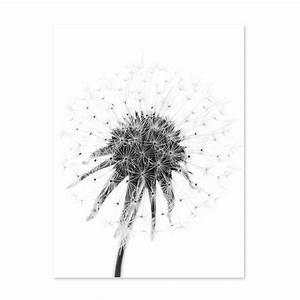 Bild Pusteblume Schwarz Weiß : poster 39 pusteblume 39 30x40 cm schwarz weiss motiv natur landschaft fotografie poster natur ~ Bigdaddyawards.com Haus und Dekorationen