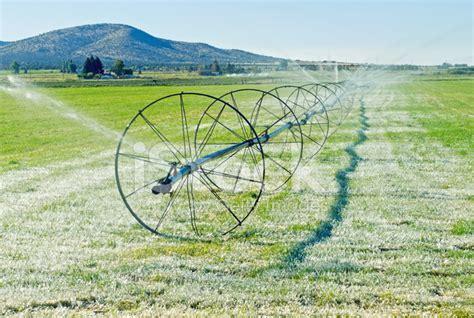 Irrigating Alfalfa Field On Farm In Central Oregon Stock