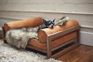 modern pet furniture that will look great in your home With modern dog bed furniture