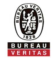 bureau veritas america security systems