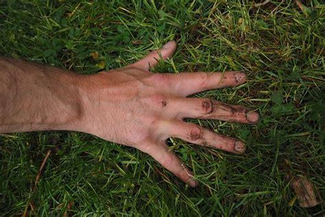 Rasen Nicht Vertikutieren by Rasen Richtig Vertikutieren Wie Wann 6 Geniale