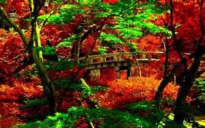 Japanese Garden Wallpaper Free