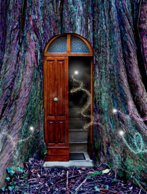 doors  perception wisdom card pack  instruction