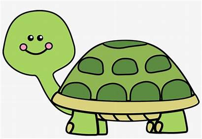 Turtle Clipart Vector Clip Transparent Library Seekpng