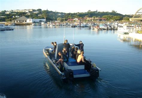 Boat Cruise In Port Alfred by Port Alfred River Cruise