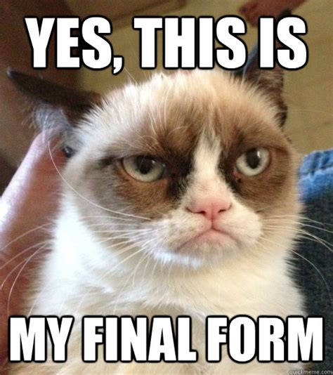 Grumpy Cat Yes Meme - yes this is my final form good day grumpy cat quickmeme