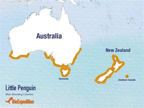 emperor penguins habitat map