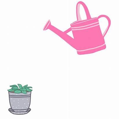 Plant Water Pixel Sticker Petit Giphy Plants