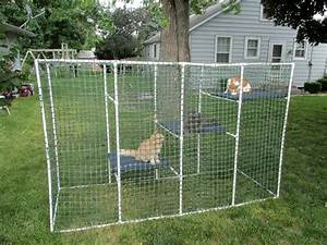 pvc cat enclosure petdiyscom With premade dog kennels