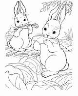 Bunny Rabbit Coloring Drawings Pages Animal Farm Wild Popular sketch template