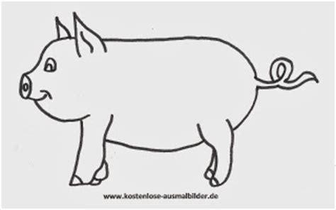 malvorlagen schweine ausmalbilder kostenlos