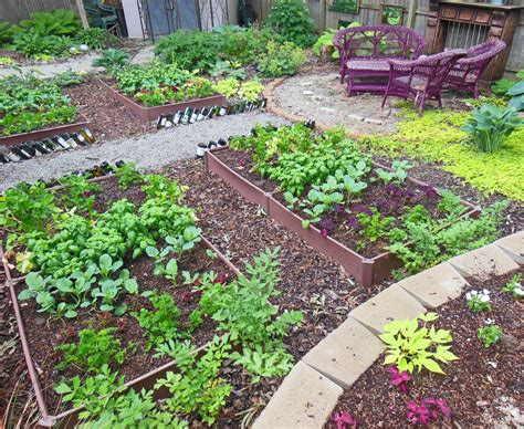 How To Plant A Full Shade Raised Vegetable Garden Bedyear