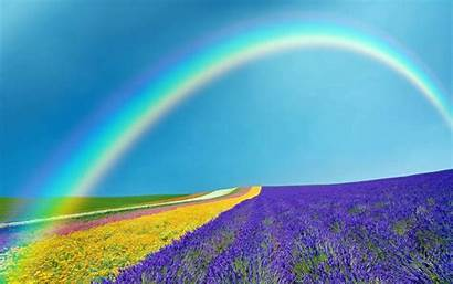 Rainbow Spring Background Wallpapers Nature Natural Earth