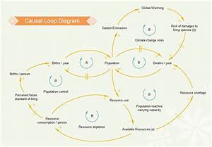 Causal Loop Diagram Software