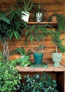 veja e confira lindos jardins de casas