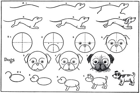 Kids Printable Draw Some Dogs Pug Dachshund The