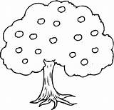 Tree Apple Coloring Pages Trees Supercoloring Apples sketch template