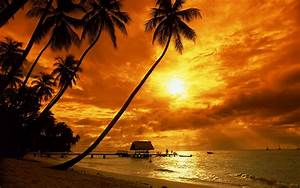 Tropical Beach Sunset Wallpaper Desktop - WallpaperSafari