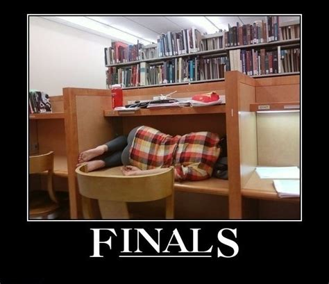 Finals Memes College - four cool things about finals week sustainablespu