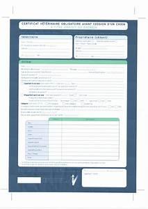 Certificat De Vente Pdf : le forum des border terriers certificat v t rinaire ou certificat de bonne sant ~ Gottalentnigeria.com Avis de Voitures