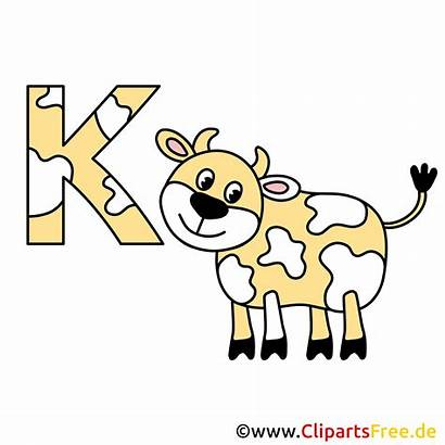 Buchstaben Alphabet Kuh Bild Abc Deutsch Clipart