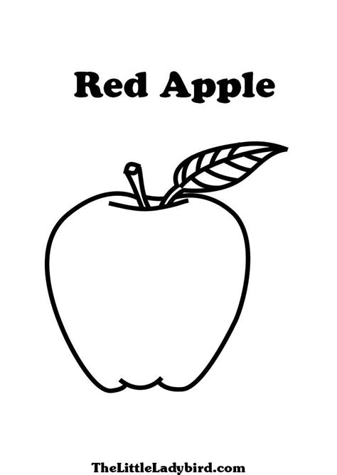 fruits coloring pages thelittleladybirdcom