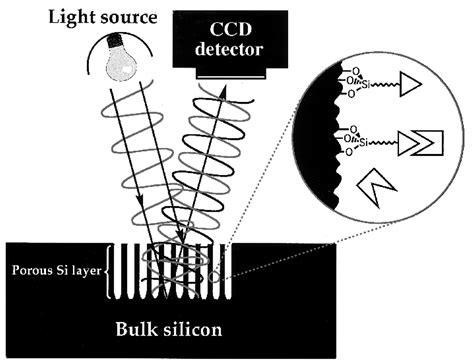A Porous Silicon-Based Optical Interferometric Biosensor ...