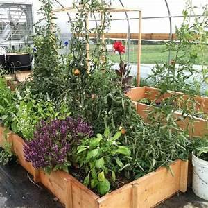 Hochbeet Blumen Bepflanzen : hochbeet selber bauen und bepflanzen vorteile materialien und tipps ~ Watch28wear.com Haus und Dekorationen