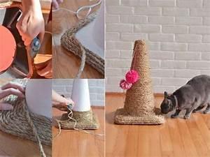 Jouets Pour Chats D Appartement : 18 jouets faits maison pour votre chat ou chien des id es ~ Melissatoandfro.com Idées de Décoration