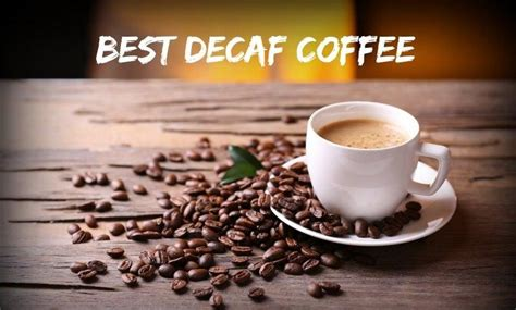 Best Decaf Coffee Chicory Coffee Health Mirror Table India Liquid Adelaide Mirrored Piano Gold How To Grow Canada
