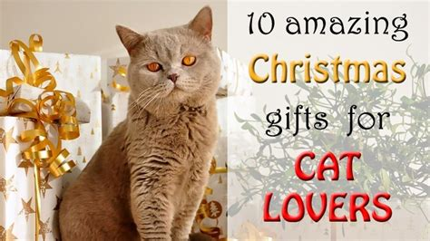 10 Amazing Christmas Gifts For Cat Lovers On Your List